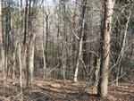Toccoa River Forest, Phase II Lot